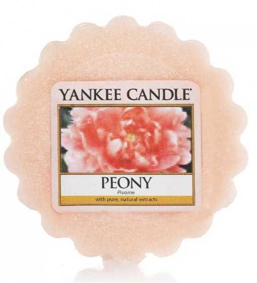 Pivoine - Tartelette Yankee Candle - 1