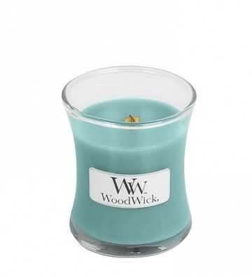Banane bleue de Java - Mini Jarre Wood Wick - 1