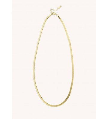 Collier Snake Or