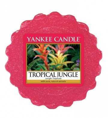 Jungle Tropicale - Tartelette Yankee Candle - 1