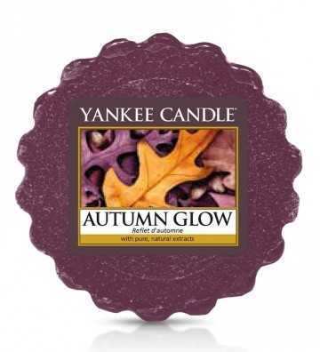 Reflets d'Automne - Tartelette Yankee Candle - 1